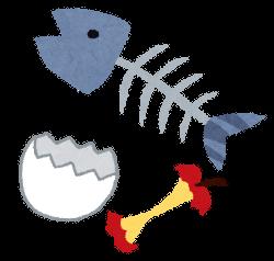 暑い時期のゴミの保管_魚