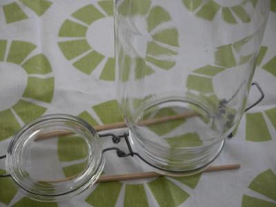 美容効果のある梅シロップの作り方